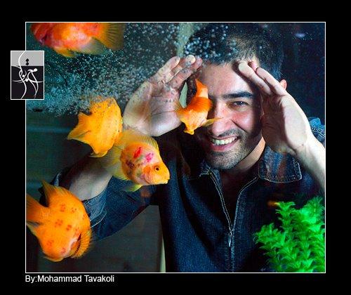 جدیدترین عکس های شهاب حسینی,عکس های جدید شهاب حسینی,تصاویر جدید شهاب حسینی,بیوگرافی شهاب حسینی,شهاب حسینی,گالری عکس پیکسکده,عکس جدید,عکس های به روز,تصاویر آبان 90,عکس های آبانماه 90,پیکسکده,بزرگترین سایت دانلود عکس,گالری عکس بازیگران ایرانی