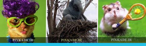 http://pixkade.persiangig.com/image/Pixkade/21/Pixkade.jpg